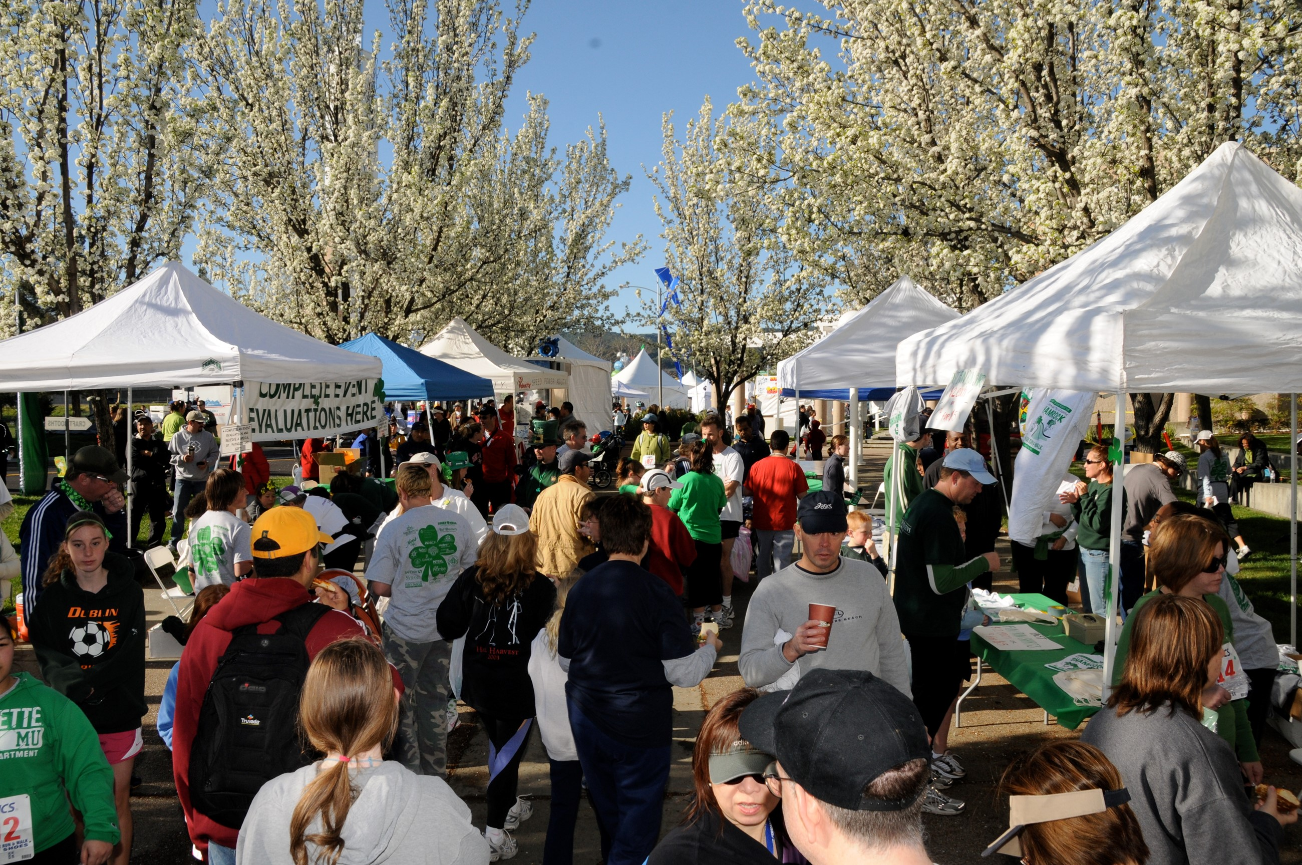 St. Patrick's Day Crowd in park.jpg