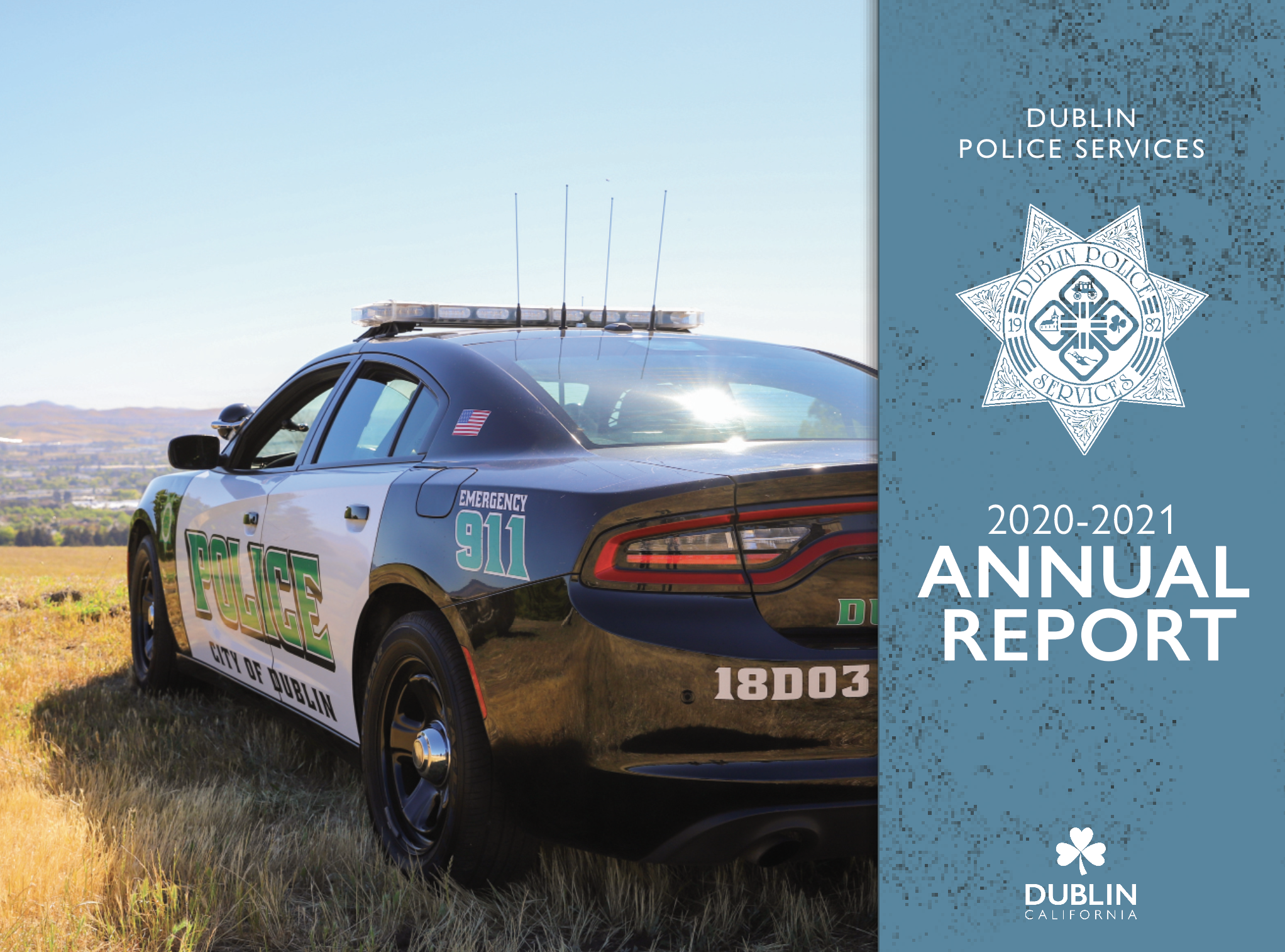 2019-2020 DPS Annual Report