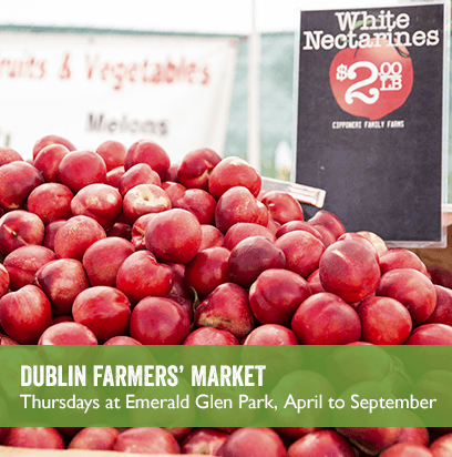 Table of nectarines; Link to DUBLIN FARMERS' MARKET webpage